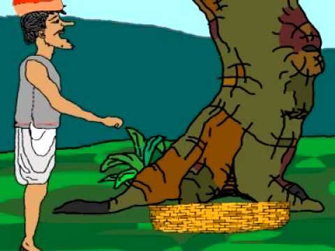 Monkeys And The Caps-stories-tales-stories For Kids-english Stories-stories For Children video