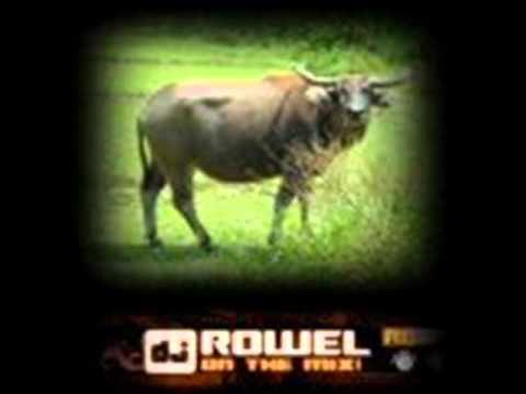 Dj Rowel Solo Powerbeatsclub  Solo   Dj Rowel Tekno Rowmix video