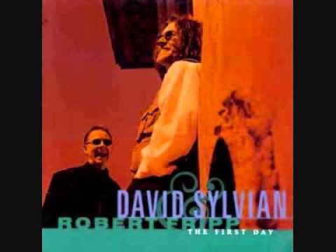 David Sylvian - 20th Century Dreaming