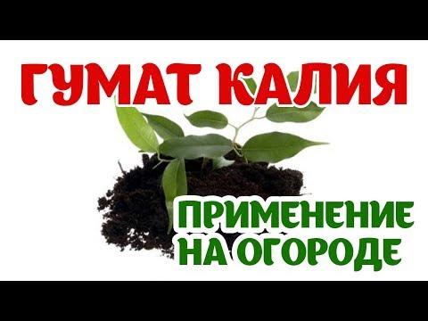 Гумат Калия. Что такое гумат и что он дает почве? Применение