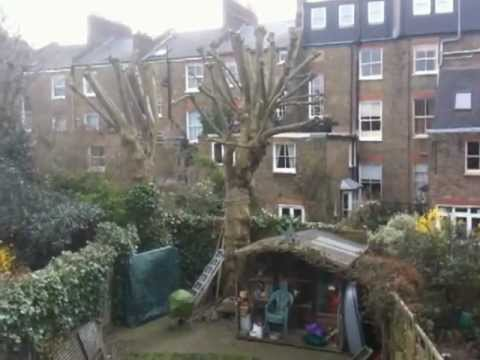 A Back Garden in Tufnell Park, London