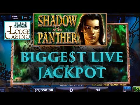 💸 Biggest Jackpot 💰 While Playing Live 🤑 | Shadow Of The Panther 🙀🐱 The Big Jackpot