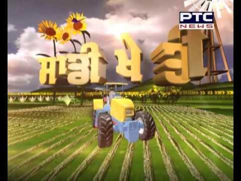 Agriculture Special | Saddi Kheti # 129 | Nov 1, 2015