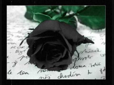 Klaus Renft Combo - Wer die Rose ehrt