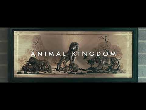 Antony Partos - Animal Kingdom
