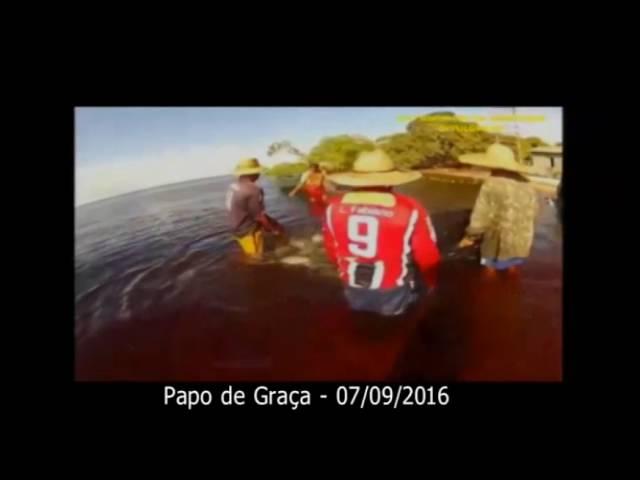Pesca de Matrinxã, águas do Rio Negro e a parábola do Evangelho.