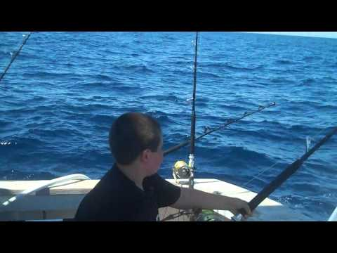 Tuna Fishing in New Jersey