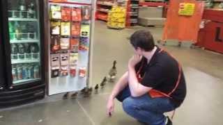Home Depot Duck Rescue! Eek!