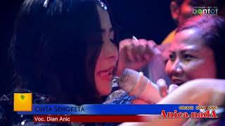 download lagu Dian Anic - Cinta Sengketa - Anica Nada Dian gratis