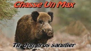 Chasse Au Sanglier/ Tir D'un Gros Sanglier 2014/2015