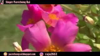 New Children Song || फूल राम्रो फूलेको || Fula Ramro Fuleko || Pareebung Rai - 2018