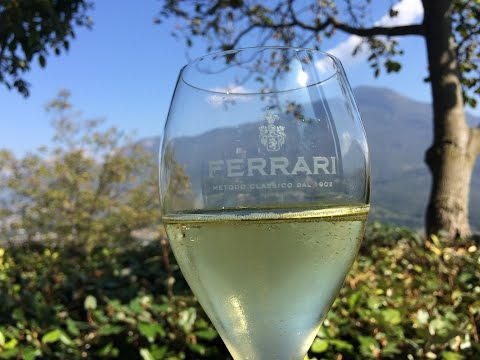Traveling in Trentino: Italian Winemakers Find Global Warming Secret Weapon