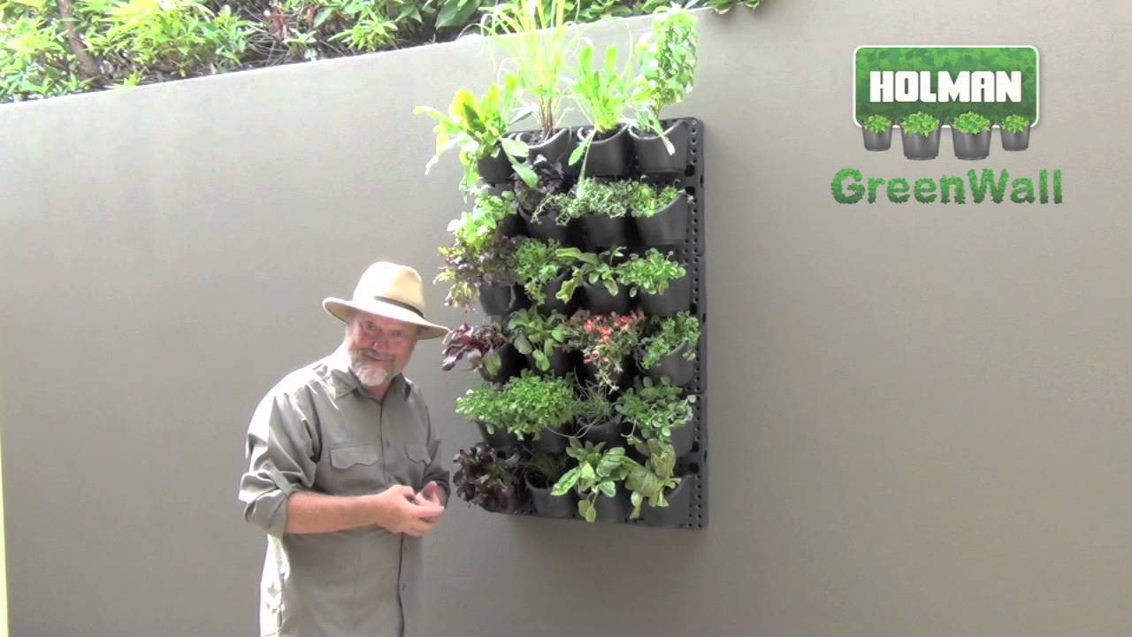 Holman Greenwall Creating A Vertical Or Horizontal
