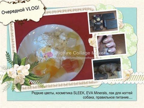 Влог/VLOG (редкие цветы, косметика, лак для ногтей, правильное питание, собака)