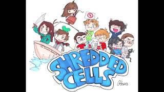 Shredded Cels Anime Podcast - Episode 71: Accel World