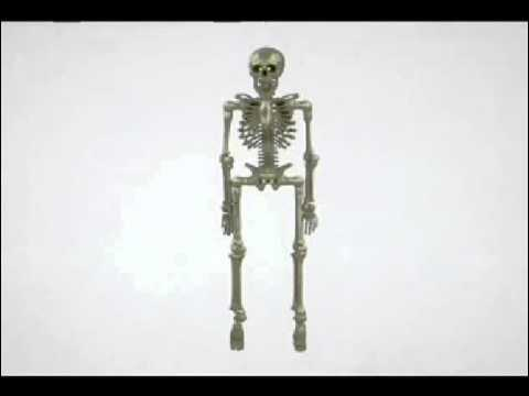 Gemmy Talking Skeleton thumbnail