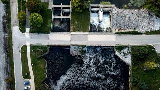 PFAS foam accumulates on Huron River in Ann Arbor