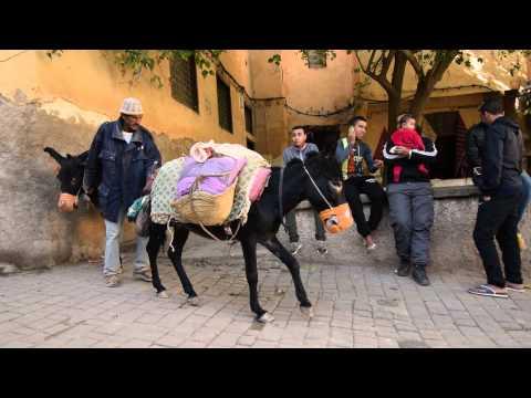 14 Day Colour Tour of Morocco