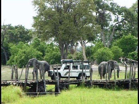 North Gate (Khwai Camp) Moremi Botswana. Travel guide.
