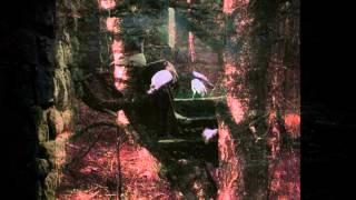 Watch Sopor Aeternus Alone video