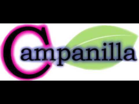 夜空に飛ばした二つの想い/Campanilla