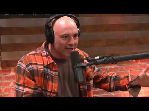Joe Rogan Seth Rich rant