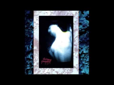 Skinny Puppy - One Time One Place
