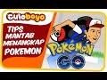 Culoboyo | Tips Mantab Menangkap Pokemon | Pokemon Go