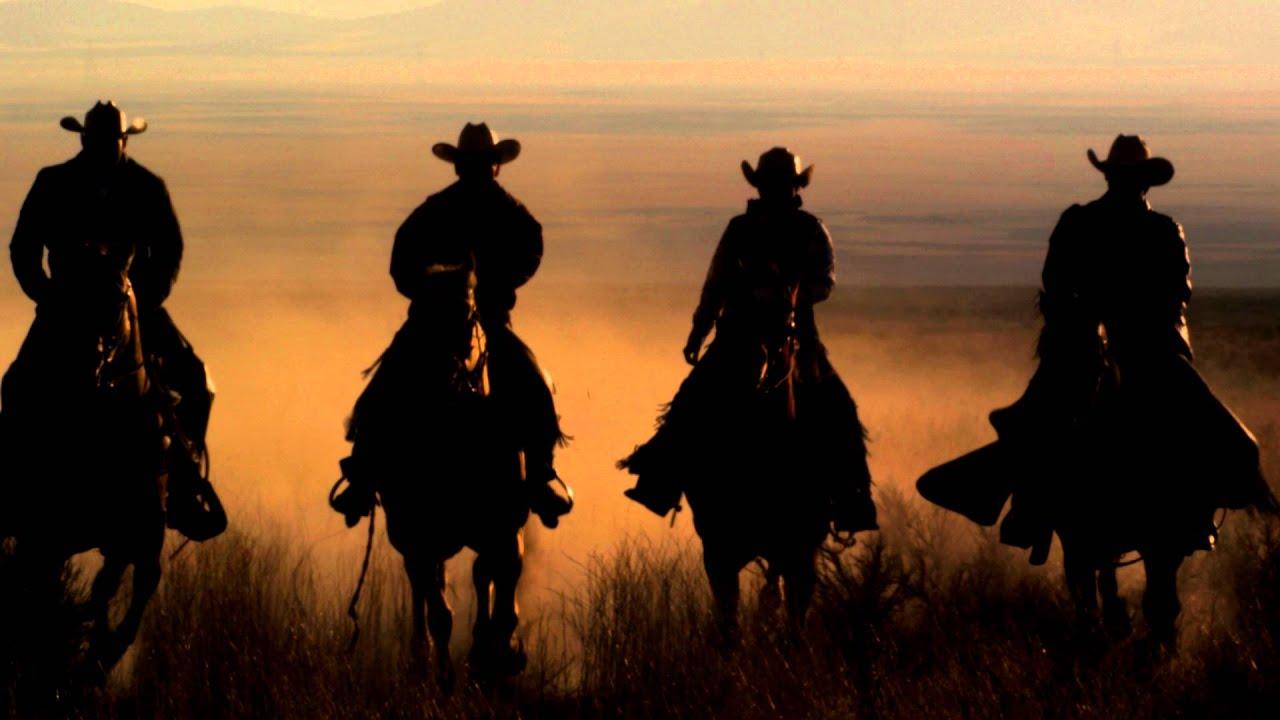 лошади фото png