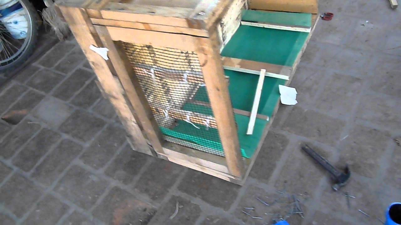 Construccion de jaula para caracoles youtube for Caracol de jardin
