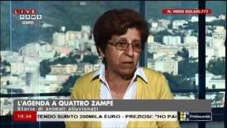 """2014 10 15 - Primocanale - Estratto dal programma """"L'agenda a 4 zampe"""""""