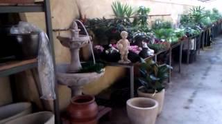 Viveros Raluy en Huesca