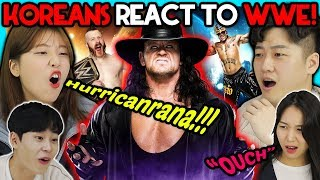 Koreans React To WWE For the First TIme!!!