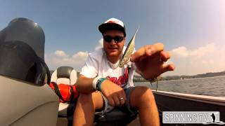 Bass fishing: 2 modi per fare l