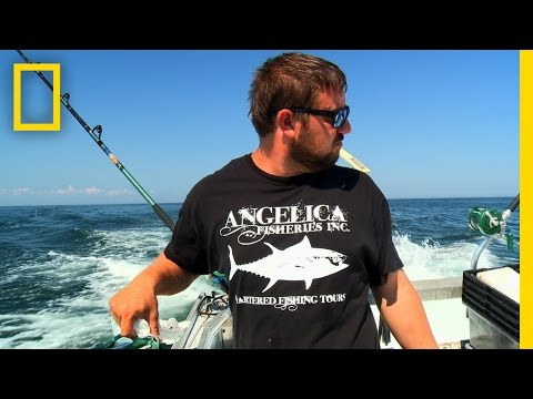 Kiddie Pool | Wicked Tuna