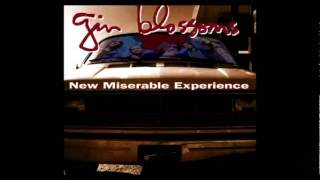 Watch Gin Blossoms Pieces Of The Night video