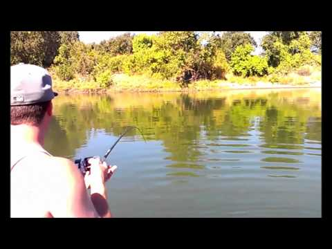 Salmon fishing on the Feather River Marysville Sacramento Area Northern California