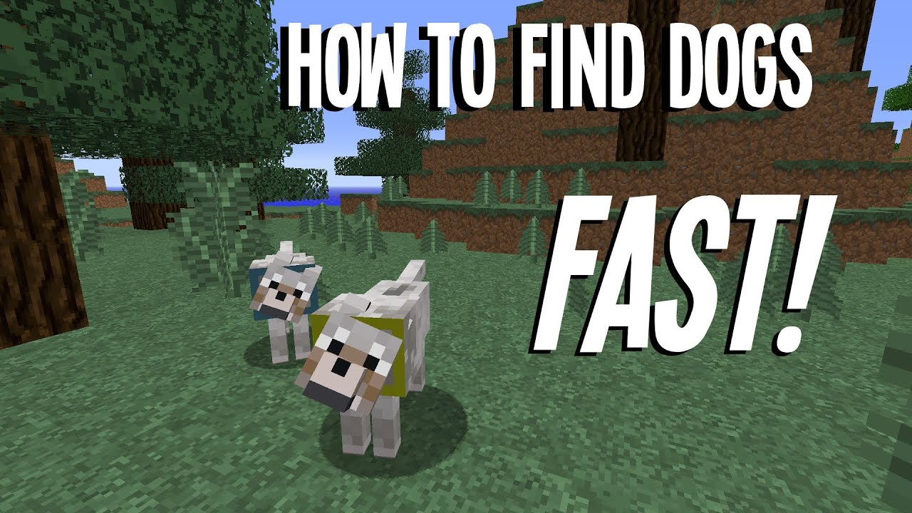 How To Make A Wolf A Dog In Minecraftr