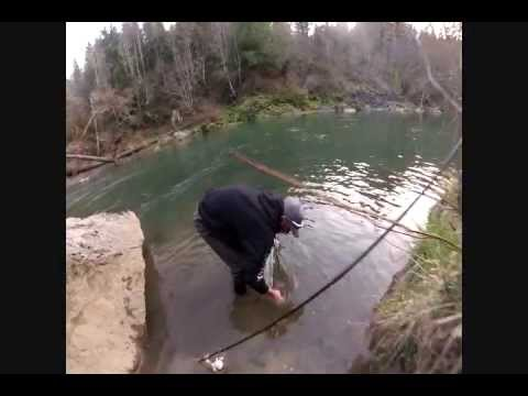 Winter Steelhead Oregon Coast Fishing