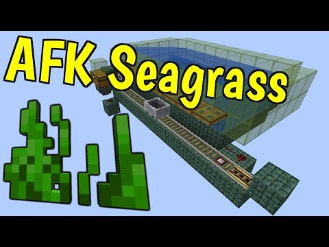 AFK Seagrass Farm! [Efficient] (27,000 items/hr)- 1.13 Minecraft