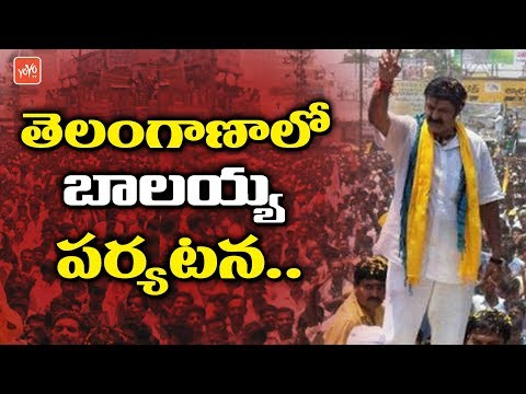 Balakrishna to Start Election Campaign in Telangana | TDP | Chandrababu | YOYO TV Channel