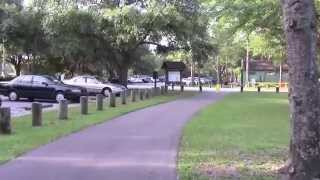 Let's Go For a Walk:  Al Lopez Park, Tampa, Florida