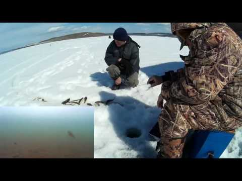 рыбалка на иркутском водохранилище видео