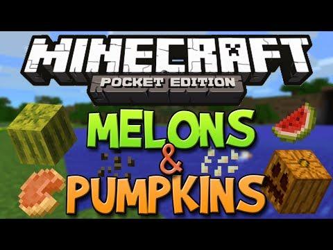 How To Get Pumpkins & Melons In Minecraft Pocket Edition 0.9.0 (Pumpkin Pie & Jack o'Lanterns)