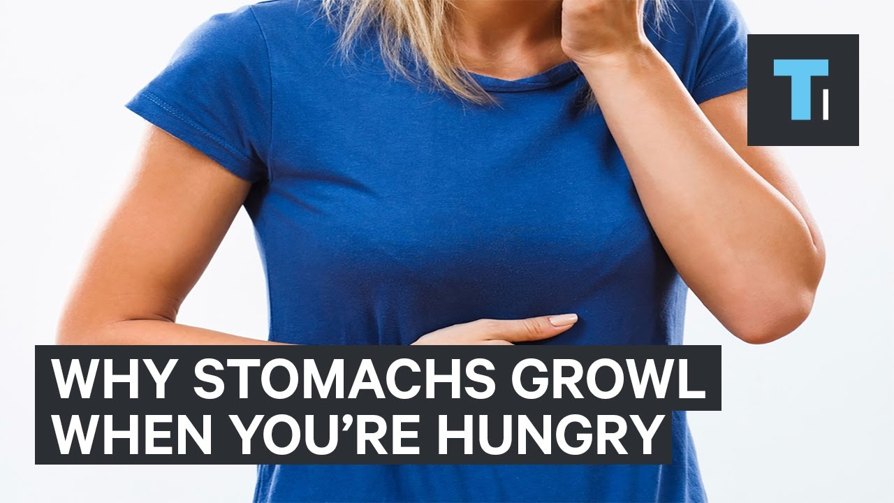 Why stomachs growl when you're hungry