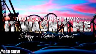 Shaggy Feat Ricardo Ducent It Wasn 39 T Me Tropical Sunset Remix