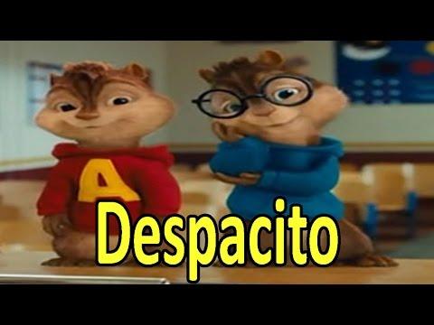 Ardillas - Despacito (Luis Fonsi)   Letra + Descarga
