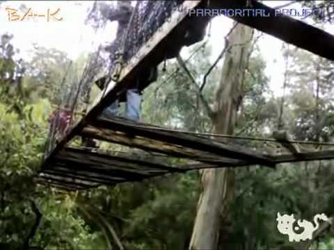 La casa de la tia to a ba k paranormal project youtube - La casa de la golosina ...