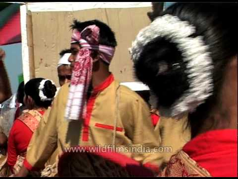 Bihu Dance Performed During Kaziranga Elephant Festival video