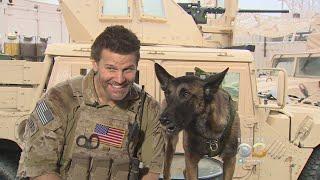 David Boreanaz's Canine Sidekick Becoming Must-See On 'SEAL Team'